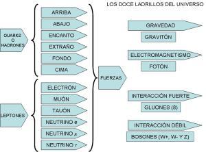 Partículas y fuerzas del universo