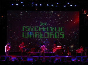 The Psychedelic Warlords
